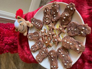 Food Coach Expert - Christmas Cranberries Dog Treats